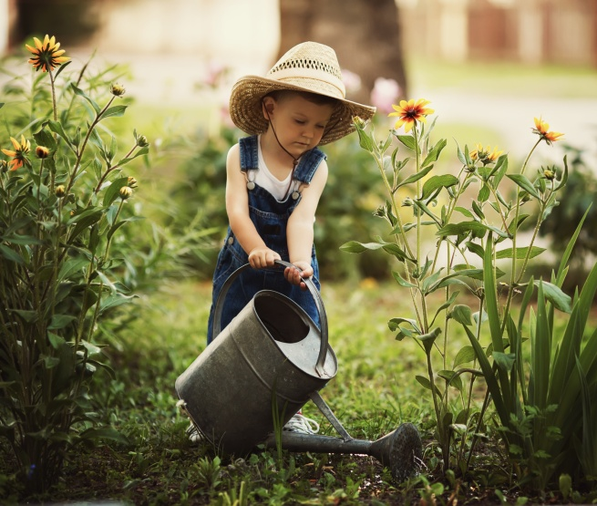 cute little boy watering flowers watering can